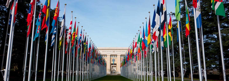 联合国GPST认证